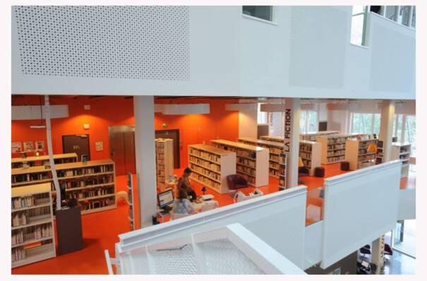 Livre lecture bibliothèque Bron