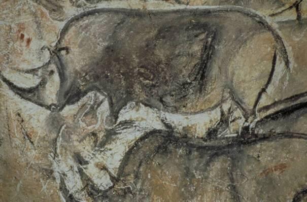 Grotte Chauvet Rhinocéros