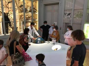 Bordeaux, museum d'histoire naturelle, Médiation dans les salles / Museum, Source : Wikimedia Commons