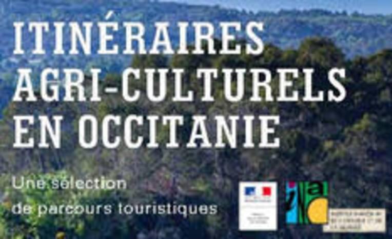 Résultats de l'appel à projets artistiques et culturels DRAC-DRAAF 2021