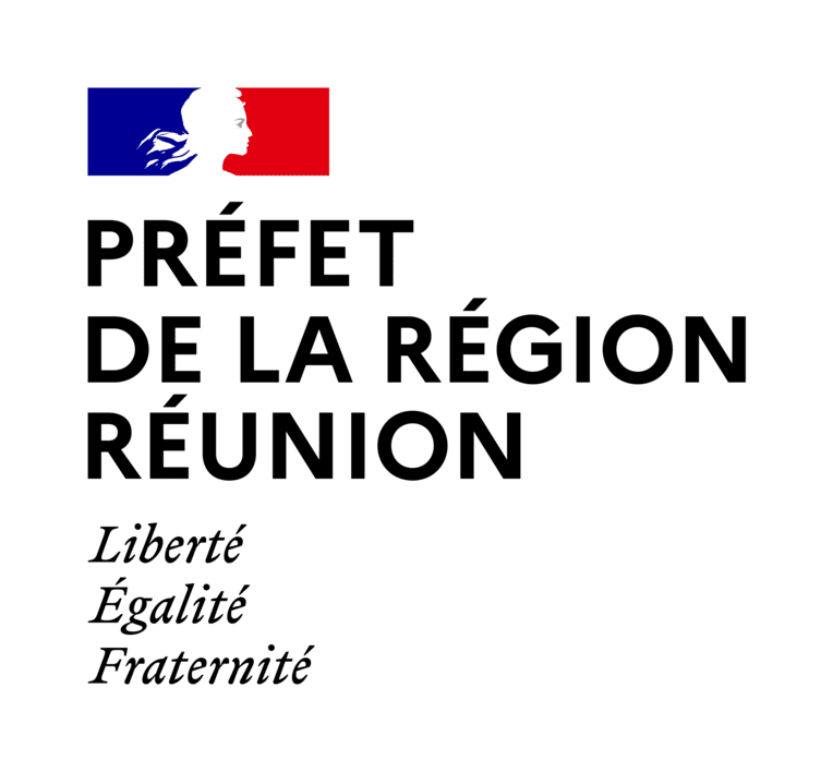 Demandes de subvention 2021 auprès de la direction des affaires culturelles de La Réunion