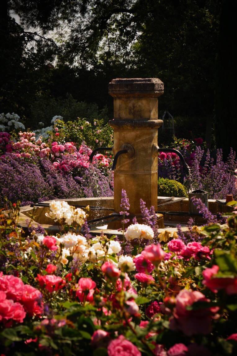 RENDEZ-VOUS AUX JARDINS 2021- Jardin de la Bouthière