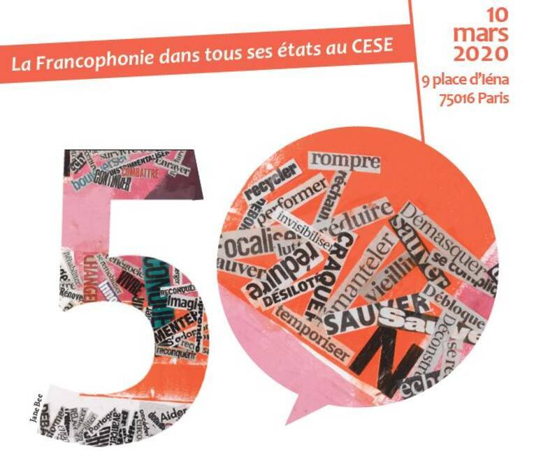 La Francophonie dans tous ses états au CESE
