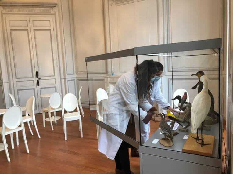 Procédure de validation des fonctionnalités liées au récolement décennal des collections des musées de France