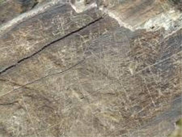 Gravures rupestres de Cerdagne