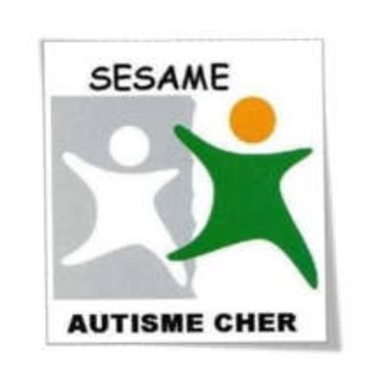 """Résidence d'artistes 2020 : EAM """"La Châtaigneraie"""" - Sésame Autisme du Cher"""