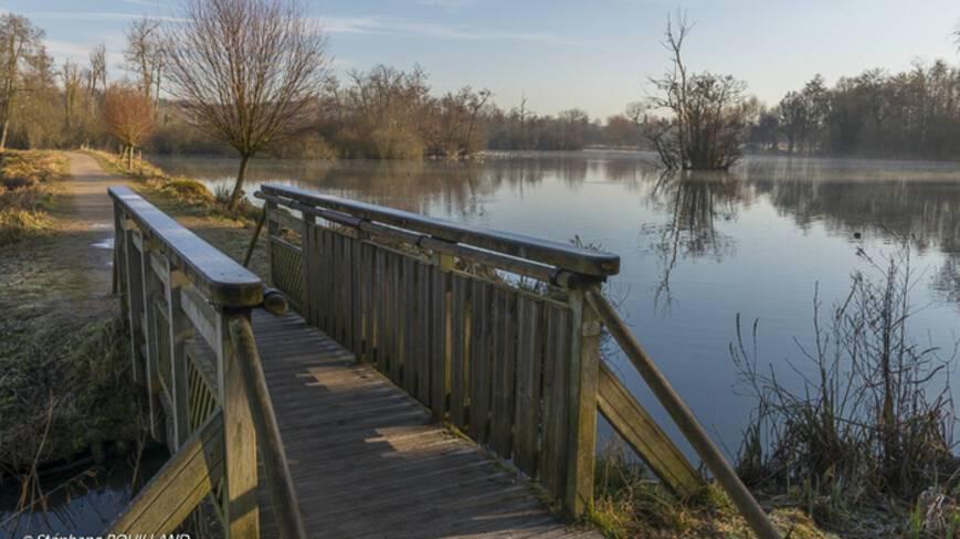 Pont de bois au premier plan reliant deux rives surplombant, en arrière plan un lac.