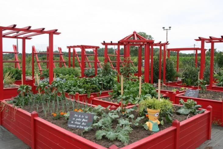 Jardin en carrés