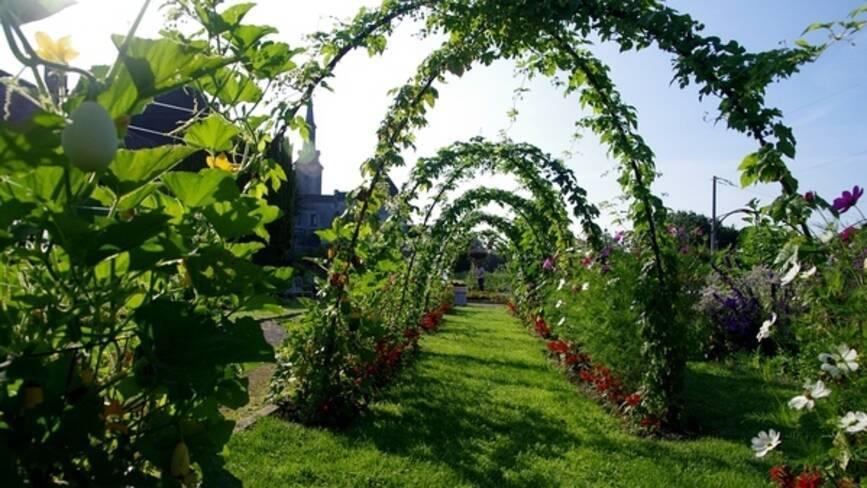 Allée de jardin voutée par des arches de plantes grimpantes