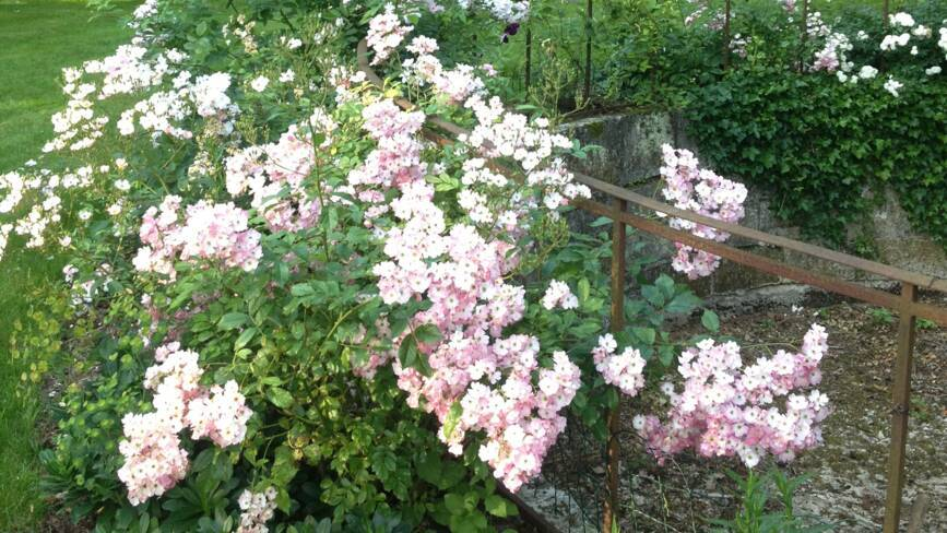 Aisne, Montgobert, les jardins du château