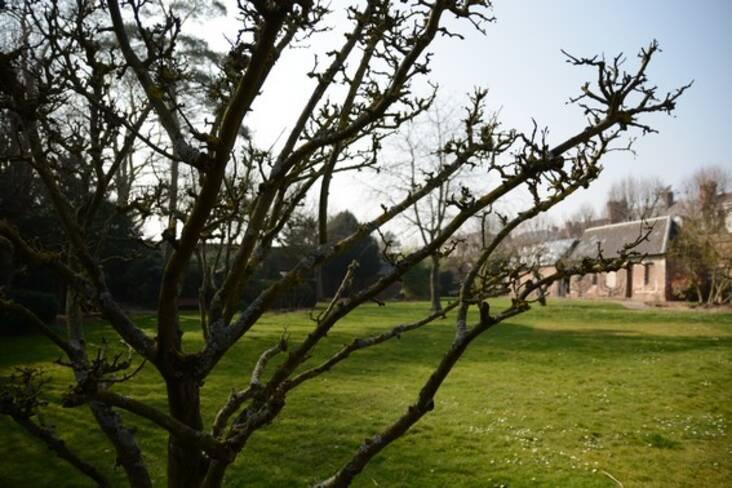 Somme, Abbeville, jardin du Carmel