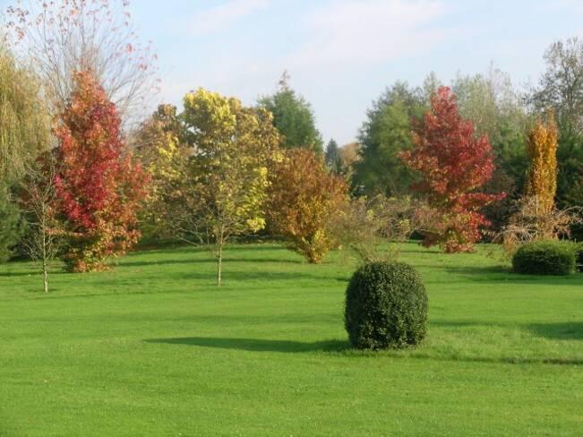 Somme, Berteaucourt-les-Thennes, le jardin de Lucine