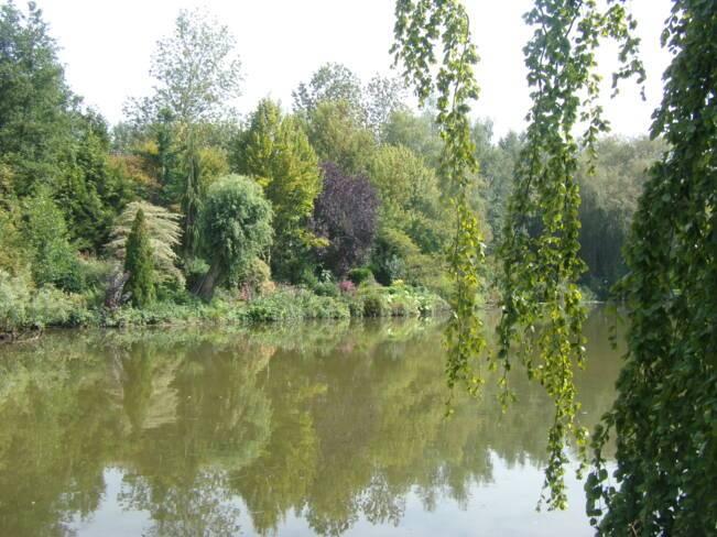 Somme, Davenescourt, jardin à fleur d'O