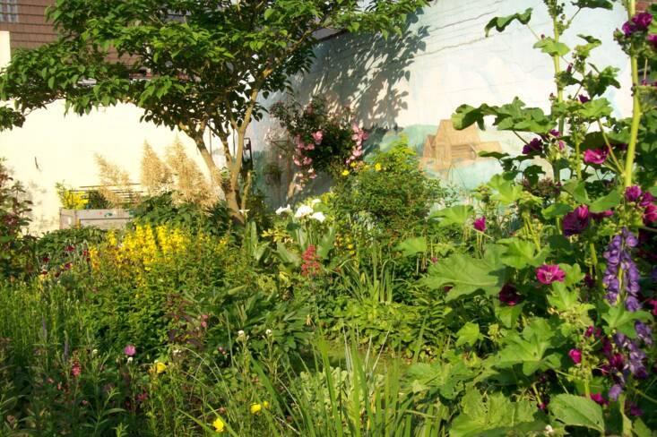 Somme, Epehy, le jardin de curé
