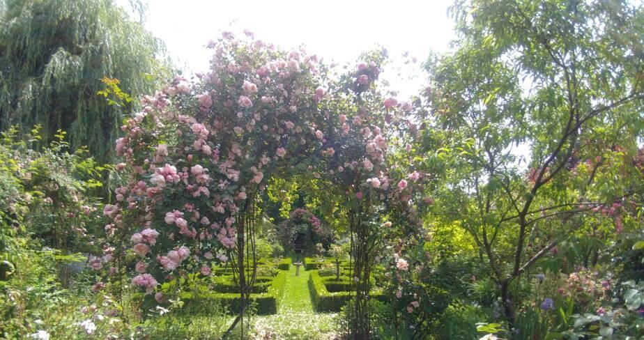 (45) Vienne en Val : Le jardin de Véga