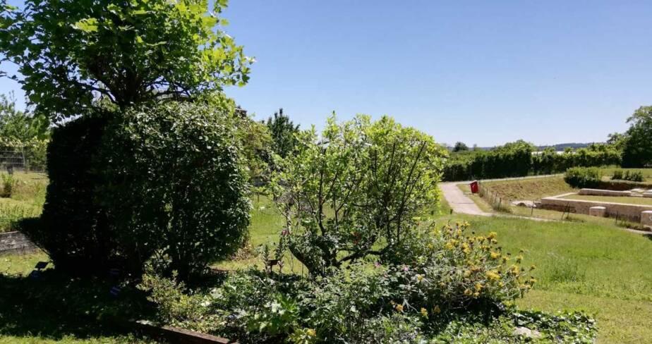 (36) Saint Marcel : jardin romain d'Argentomagus
