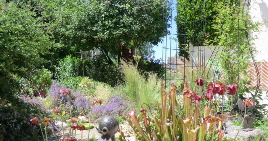 (45) Bray en Val : jardin de Martine