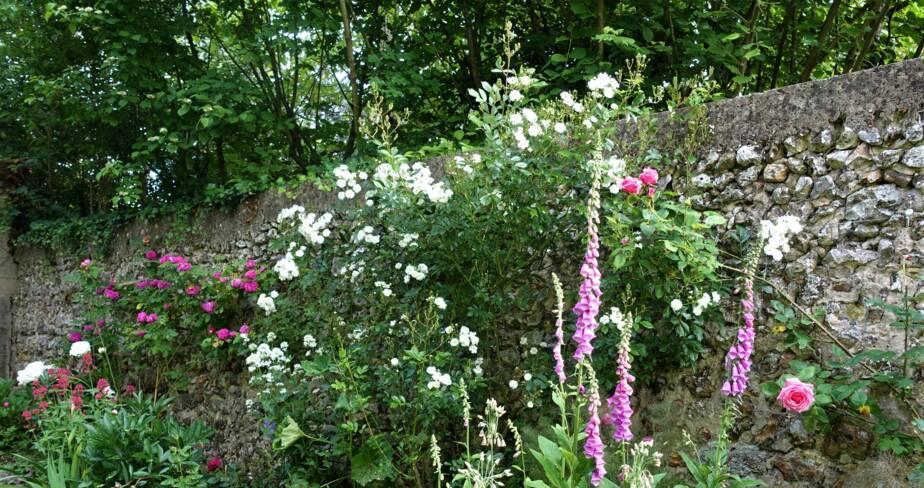 (28) Senonches : jardin de Maïzé