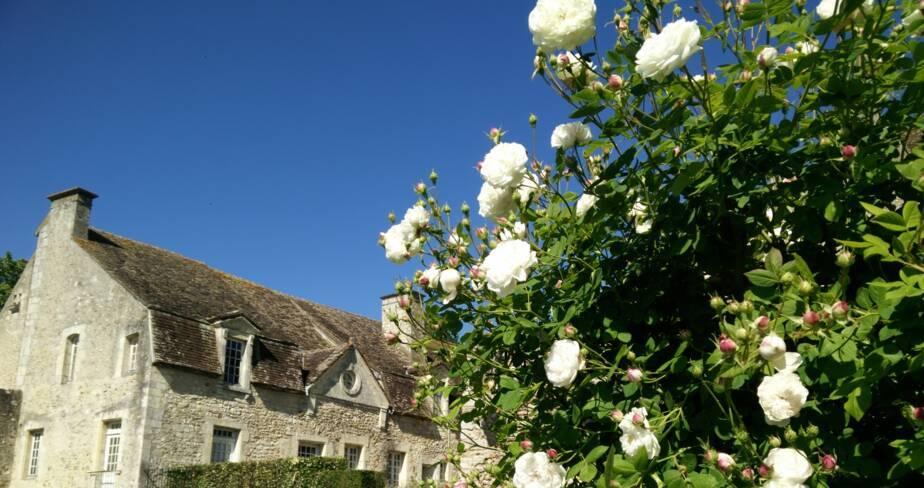 (28) Nogent le Rotrou : jardins du château des comtes du Perche