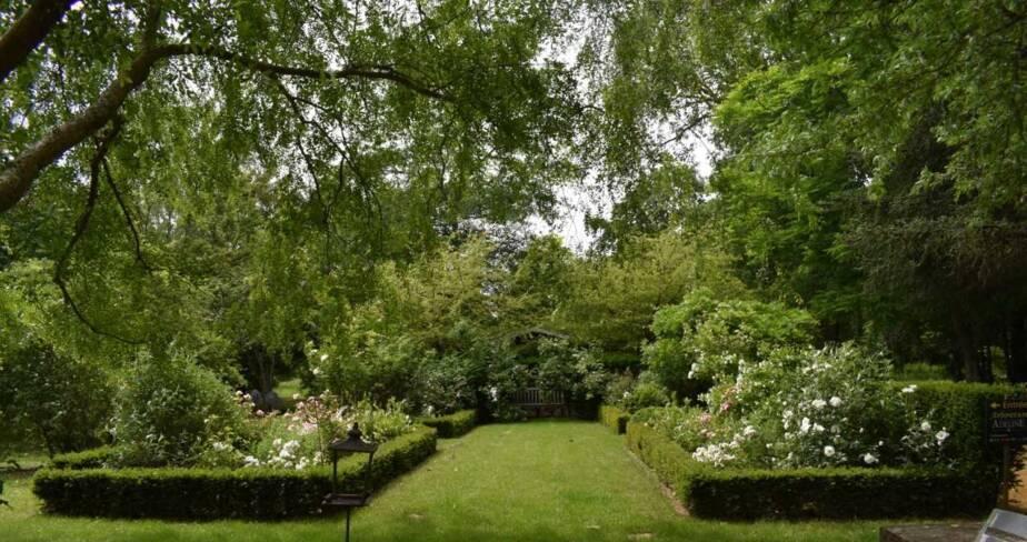 (18) La Chapelle Montlinard : arboretum Adeline