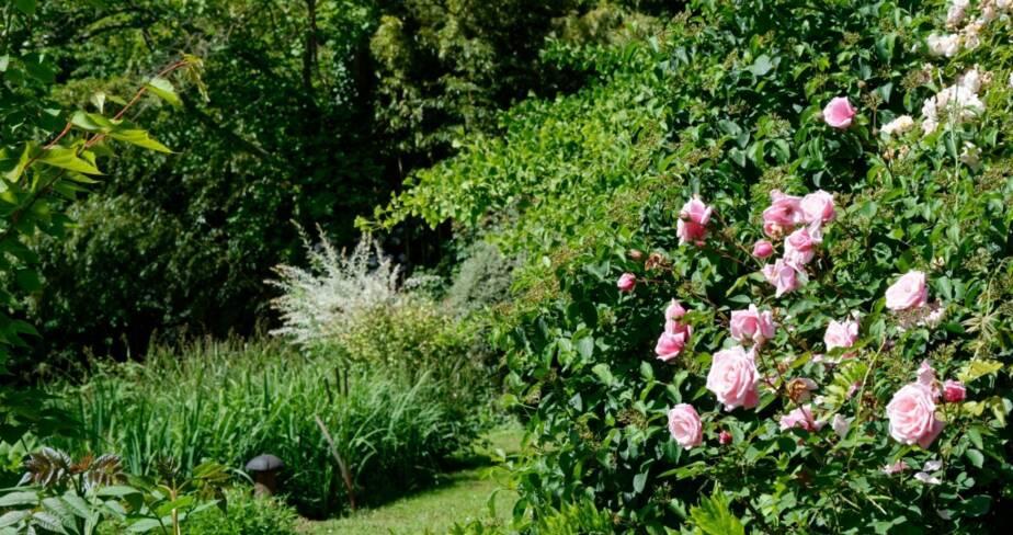 (36) Issoudun : jardin des Prés de Chinault