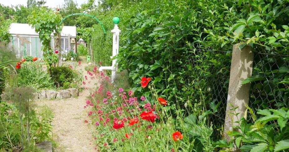 (28) Fontaine-la-Guyon : jardin de Jacques