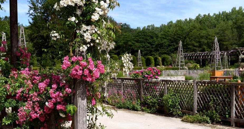 (45) Chamerolles : jardin du château