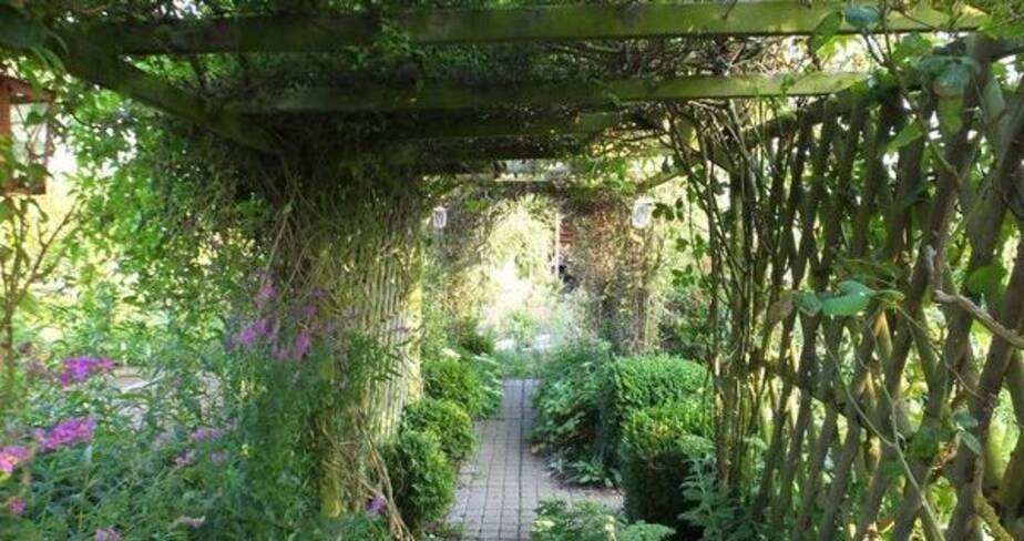 Allée de jardin sous pergolas recouvertes de plantes grimpantes