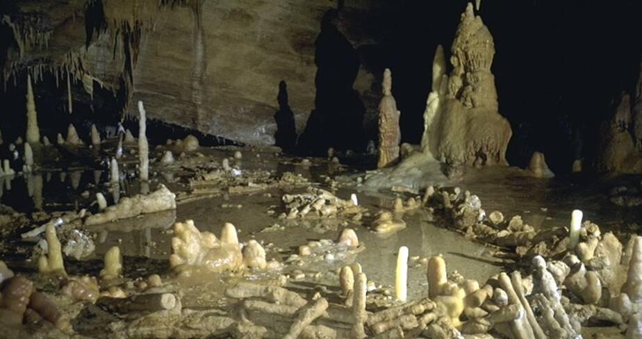 Salle de la grotte de Bruniquel