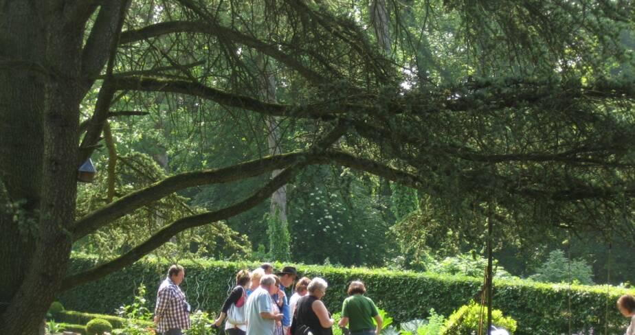 Le jardin de Lilith 1, Suzanne, Somme