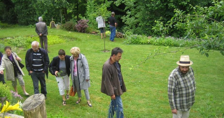 Le jardin de Lilith 2, Suzanne, Somme