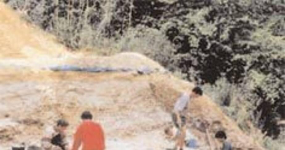 18- Les gisements acheuléens de Cagny (Somme), 2001
