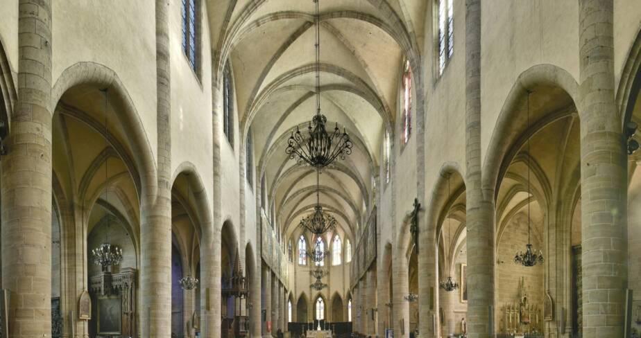 Cathédrale Notre-Dame-et-Saint-Privat. Mende (48)