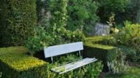 Jardin d'aromatiques
