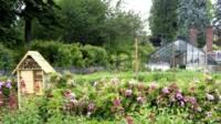 Buissons de fleurs et hotel à insectes au premier plan et une cabane entouré d'arbre au second