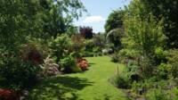 Vue d'un jardin à l'anglaise