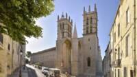 Cathédrale Saint-Pierre-et-Saint-Paul. Montpellier (34)