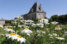 Parc du château d'Azay-le-Ferron