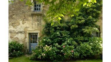 Jardin de la Collection Annabelle – 39290 Rainans