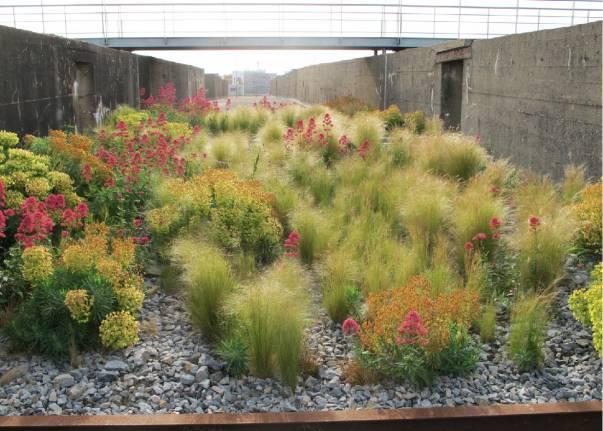 La planète elle-même doit être considérée comme un jardin ...