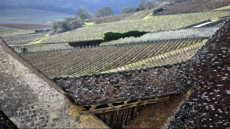 Depuis les toits du Château du Clos de Vougeot