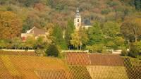 Les vignobles d'Hautvilliers