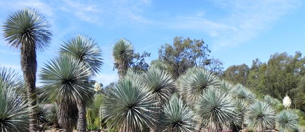 La Londe Les Maures Jardin Zoologique Tropical Ministere De La