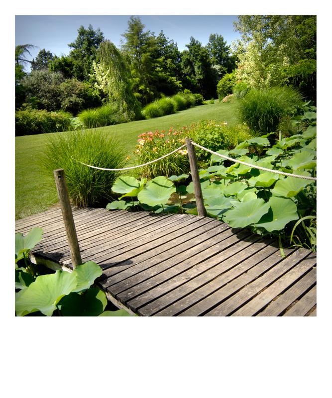 Jardin des martels giroussens tarn minist re de la for Jardin 81