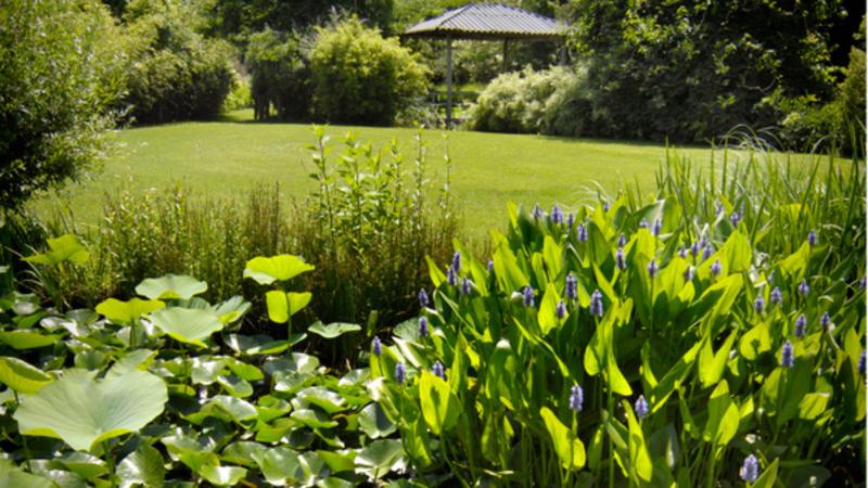 Jardin des Martels, Giroussens - Tarn