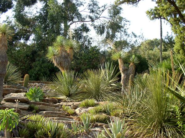 Les jardins remarquables du var minist re de la culture for Jardin rayol canadel