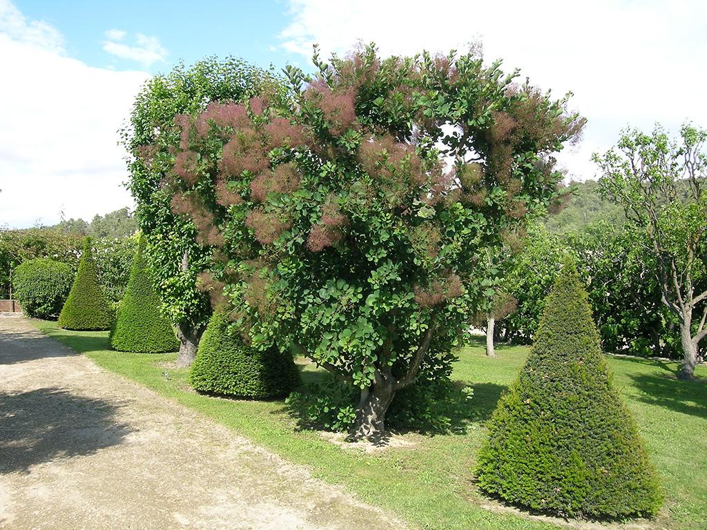Les jardins remarquables du vaucluse minist re de la culture - Les jardins du val de moselle ...