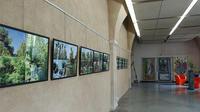 DRAC Rhône-Alpes - exposition Jardins les tardines © Jean-Marie Refflé