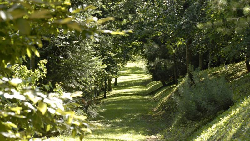 """Parc à l'anglaise """"La Cude"""" 70240 Mailleroncourt-Charette"""