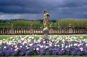 Valmer : Bacchante et tulipes